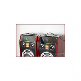 Boxe audio active Temeisheng DP-2319